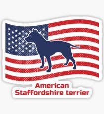 american pitbull terrier merchandise american staffordshire terrier gifts u0026 merchandise redbubble