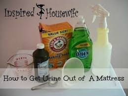 How To Get Dry Stains Out Of Carpet How To Get Stains Out Of A Mattress Inspired Housewife