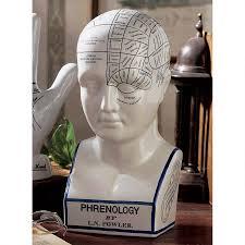 decorative home accents l n fowler phrenology head statue medical cranium bust decorative