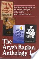 aryeh kaplan books the aryeh kaplan anthology illuminating expositions on