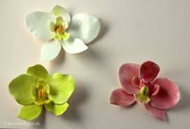 moth orchid how to make a fondant gum paste moth orchid s sugar