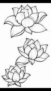 lotus flower outline free download clip art free clip art on