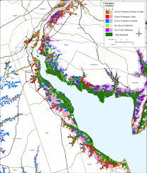 Virginia Flood Map by Sea Level Rise Planning Maps Likelihood Of Shore Protection In