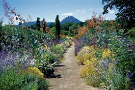 california native plant gardens elements of gardens kate frey sustainable gardens