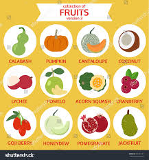 food vector collection fruits version three food vector stock vector 326121101