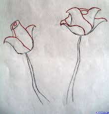 how to draw roses step by step flowers pop culture free online