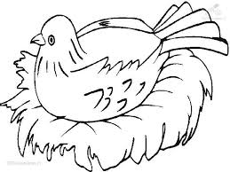 bird coloring page bird to color animals u003e u003e birds u003e u003e nesting bird coloring page