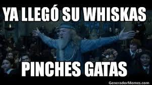 Meme Generador - meme creator dumbledore meme generator at memecreator org