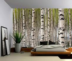 Wall Mural Sunrise In A Forest Wall Paper Self Adhesive Birch Tree Forest Large Wall Mural Self Adhesive Vinyl