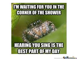 Friendly Spider Memes Image Memes - misunderstood spider meme shower