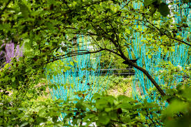 atlanta s botanical garden will brighten up with rainbow trees