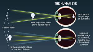 What Structure Of The Eye Focuses Light On The Retina Bbc Science How Do Telescopes Let Us See So Far Into Space