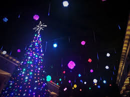 Zoo Lights Jacksonville by Christmas Zoo Lights Christmas Lights Decoration