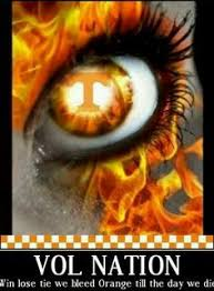 Tennessee Football Memes - tennessee volunteers ipad wallpaper and background 960 800 tennessee