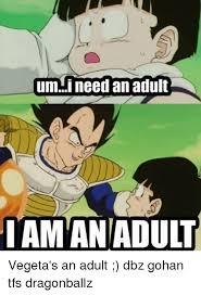 I Need An Adult Meme - umi need an adult i am an adult vegeta s an adult dbz gohan tfs