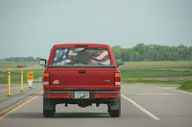 American Flag On Truck American Flag Minnesota Prairie Roots