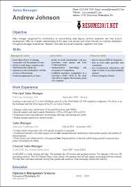 resume sles in word format sales manager resume template 2017