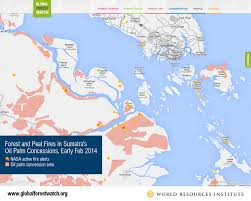 Indonesia World Map by 9 Maps That Explain The World U0027s Forests Wri Indonesia