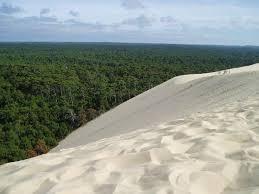 chambre d hote dune du pilat dune du pyla photo de dune du pilat la teste de buch tripadvisor