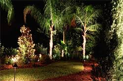 south tampa outdoor landscape lighting brandon lithia fishhawk