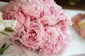 Wedding Flowers Peonies 17 Peony Wedding Flowers Tropicaltanning Info