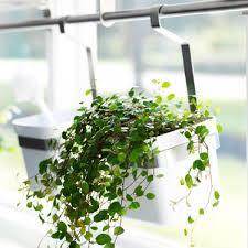 plante pour cuisine les 25 meilleures idées de la catégorie pots de cuisine suspendus
