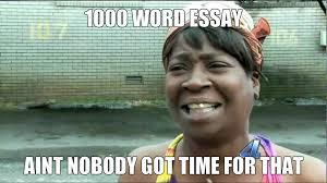 Essay Memes - 1000 word essay meme by zoruaxguy2013 on deviantart