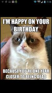 Grumpy Cat Meme Happy - happy birthday grumpy cat meme quotes lol rofl com images litle pups