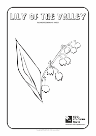 lily of the valley coloring page cool coloring pages