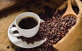 Luwak Coffee kopi luwak coffee beans 160g discountcoffee