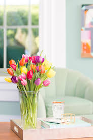 Meaning Of Home Decor The Surprising History And Meaning Of Tulips Proflowers Blog
