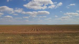 Oklahoma landscapes images Southwestern oklahoma landscape harmon county oklahoma flickr jpg