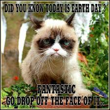 Best Grumpy Cat Memes - funny clean mega grumpy cat memes