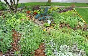 Fruit Garden Layout Vegetable And Fruit Garden Layout Design Ideas For Front Yard