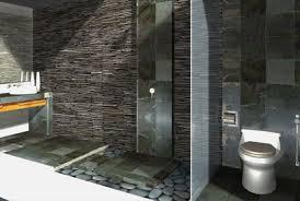 bathroom design program gorgeous 70 remodeling bathroom program design inspiration of