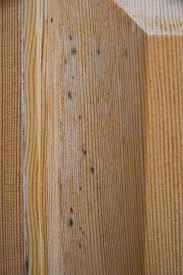 Exterior Door Varnish Spots Clear Coat On An Exterior Door