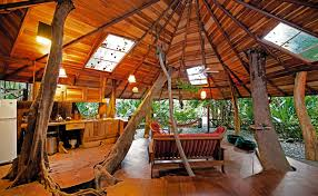 the tree house in costa rica offers year round warmth and comfort