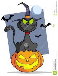 cartoon halloween cat on pumpkin royalty free stock image image