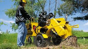 stump grinder rental near me stump grinder commercial rentals cbell ca where to rent stump