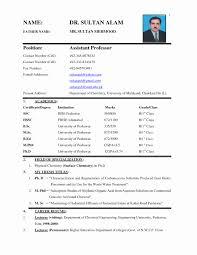 job application cv format resume biodata sample job application resume format pdf fresh