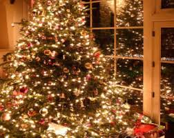 Photography Backdrop Christmas Tree Door Photo Background