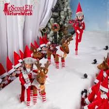 on the shelf reindeer on the shelf ideas ready to take flight pets reindeer