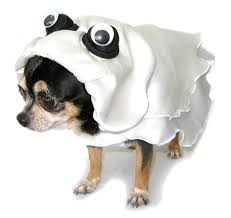 Ghost Costumes Ghost Dog Costume Ghost Costume For Dogs Ghost Halloween Dog
