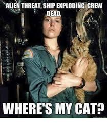 Aliens Memes - alien threat shipexploding crew dead where s my cat meme on me me