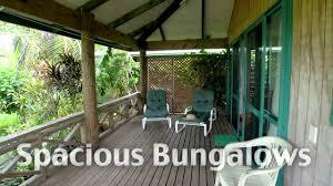 aroa kainga rarotonga accommodation youtube