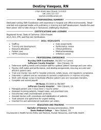 sample resume professional summary customer service resume sample