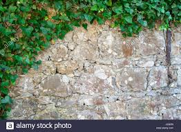 garden brick plant border wall stock photos u0026 garden brick plant