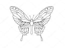 ornamental butterfly outline illustration stock