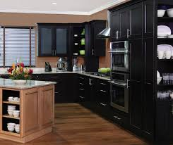homecrest cabinets door style dover wood maple finish java