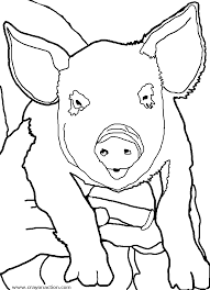 pig coloring crayon action coloring pages